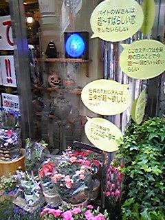「アート仙台場所2008」12。