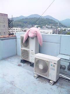 WAP2009「KIRYU/OHMAMA」展03