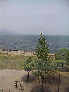 琵琶湖でございます。