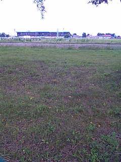 帯広競馬場、正面から。